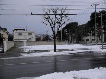 画像 002s.JPG